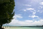 カープアイランドの桟橋2