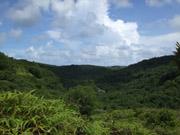 遠くからのガラスマオの滝